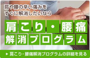 肩こり・腰痛解消プログラム
